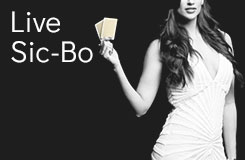 Live Sic Bo Live Casino Table Game