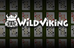 Wild Viking Table Jackpots Game